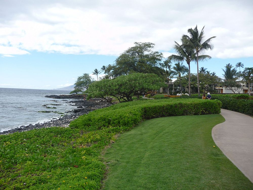 affordable maui accommodations